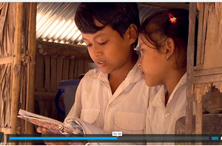 Som At Video: Kinship
