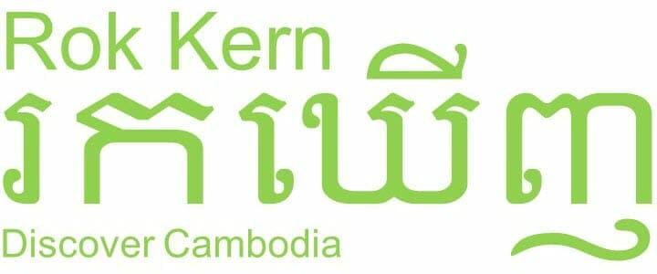 Children in Families Rok Kern Logo
